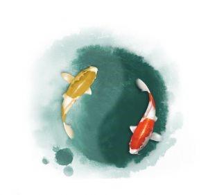 horoscopo diario para piscis
