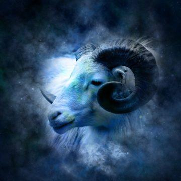 Que animal es cada signo del zodiaco